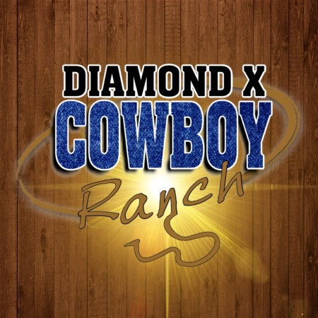 Diamond X Cowboy Ranch | Wedding & Year End Function Venue | 35km from Pretoria